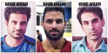 vahid-afkari